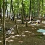 Kısıtlama kalktı vatandaşlar Belgrad Ormanı'na koştu
