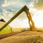 Yıldız Holding'den tarıma büyük destek