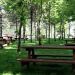 Yarın 10 millet bahçesi açılacak