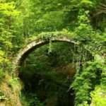Artvin'de, tarihi kemer köprü keşfedildi