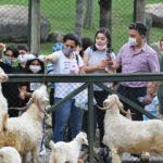 Hayvanat bahçesinde hafta sonu yoğunluğu