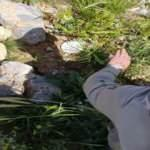 Türk Komandosu, PKK'ya ait 266 adet Dragunov mühimmatı ve 1 adet EYP'yi imha etti