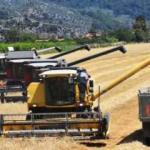 Türkiye gıdada kendi kendine yeterli mi?