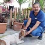 Yaralı köpeği tedavi ettirmek için 10 bin lira kredi çekti