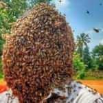 60 bin arıyı kafasında tuttu, rekorlar kitabına girdi