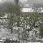 Bursa'da dolu yağdı, mahalle beyaza büründü