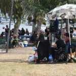 İstanbul'da yeni tehlike: Lyme! Uzman isim uyardı