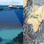 Okyanusların beşte biri haritalandırıldı