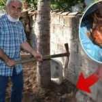Şaşırtan olay: Bahçesinde çapa yaparken buldu