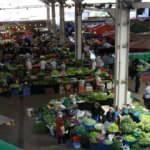 Virüs tedbiri nedeniyle açılan halk pazarı boş kaldı