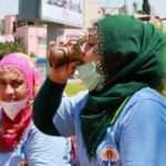 Kadın işçilerin 40 derece sıcaklıkta zorlu mesaisi