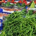 """Meyve sebze ihracatçısına """"internetten satış"""" eğitimi"""