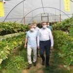 Yeşilyurt Belediyesi tarımsal hizmette büyük yol aldı