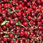 """İhracata dayalı meyvelerde """"markalaşma"""" talebi"""
