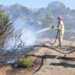 Çanakkale'de yangın: 2 hektar alan zarar gördü
