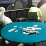 Dernek binasında kumar oynarken yakalandılar