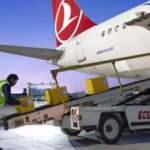 Sayıları her geçen gün artıyor! İstanbul Havalimanı merkez olacak