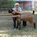 Yalnızlıktan sıkılınca satın aldığı keçiyle dost oldu