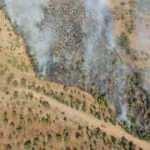 İzmir'de mahalle yakınında korkutan yangın