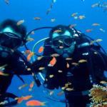 Antalya'nın su altı zenginlikleri turistleri cezbediyor
