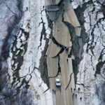 Rüyada deprem olduğunu görmek ne demek? Rüyada depremde binaların yıkılması nasıl yorumlanır?