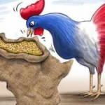 Fransa eski kolonilerini sömürerek ayakta kalabiliyor