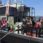 Marmaris açıklarında 35 düzensiz göçmen yakalandı!
