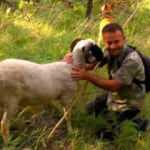 Müdürdü, köyüne dönüp hayvan yetiştiricisi oldu