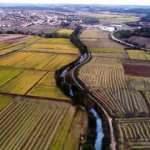 Bakan Albayrak: Tarımda büyüme hızı  OECD ve AB ülkelerinin çok ilerisinde