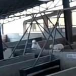 İspanya'da mezbahada kuzulara akılalmaz işkence kamerada!