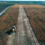 Tarımsal girdi fiyatları Temmuz'da arttı