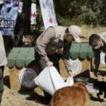 Bakan Pakdemirli rehabilite edilen yaban hayvanlarını doğaya bıraktı: