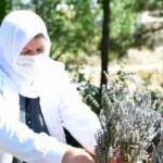 Devlet desteğiyle 111 yeni kadın kooperatifi kuruldu