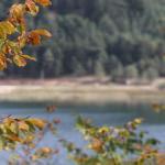 Abant Gölü'nde güz renkleri ile bezeli manzaralar