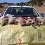 Görevlilere ateş açan avcılara 23 bin lira ceza