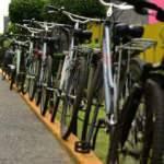Türkiye'nin bisiklet ihracatı 50 milyon avroya dayandı