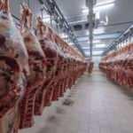 ESK, büyükbaş karkas etin alım fiyatını artırdı
