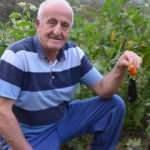 Patlıcan tohumu ekti, hayatının şokunu yaşadı