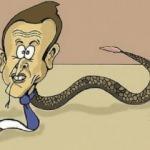 Macron'u karikatürize eden çizer işinden kovuldu
