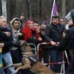 Berlin'de PKK'lı grup esnafa saldırdı