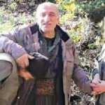 PKK elebaşı Duran Kalkan'ın medyacısı yakalandı!