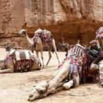 Kovid-19 Arap dünyasında turizmi vurdu