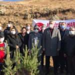 Kayseri'de MHP teşkilatı şehitler için Erciyes'e 406 fidan dikti
