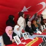 Diyarbakır annelerine 2 aile daha katıldı