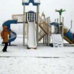 Erzurum kar ve sise teslim