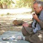 Murat Karayılan'ın telsizine sızan terörist, söyledikleriyle Kandil'i karıştırdı