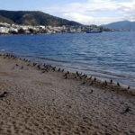 Türkiye'nin gözde turizm merkezlerinde sessizlik