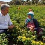 Balıkesir Milletvekili Canbey'den çiftçilere müjde