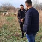 Havranlı çoban, paylaştığı videolarla sosyal medya fenomeni oldu