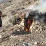 Tunceli'de yaban keçisi avlamak için kurulan tuzaklar imha edildi